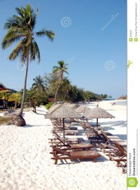 Row Of Beach Chair Side View Stock Image - Image: 810231