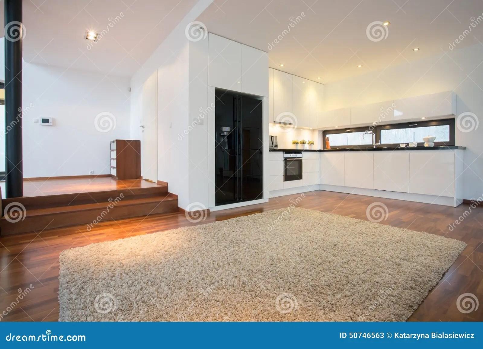 Ruime Woonkamer Met Open Keuken Stock Afbeelding
