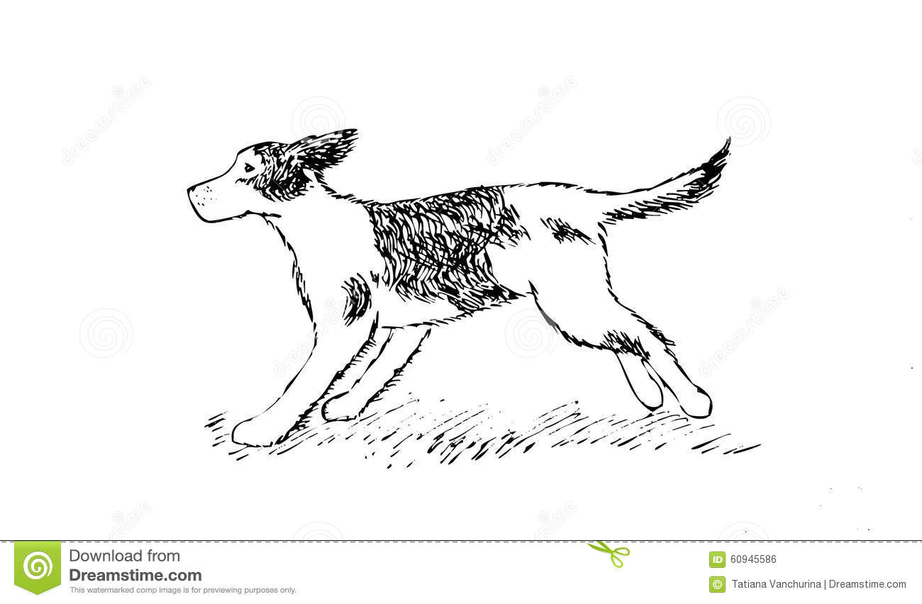 Dog Running Easy Drawing Dog Drawing Gif How To Draw For Kids Step