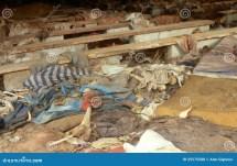 Rwandan Genocide Site. Editorial Stock Of