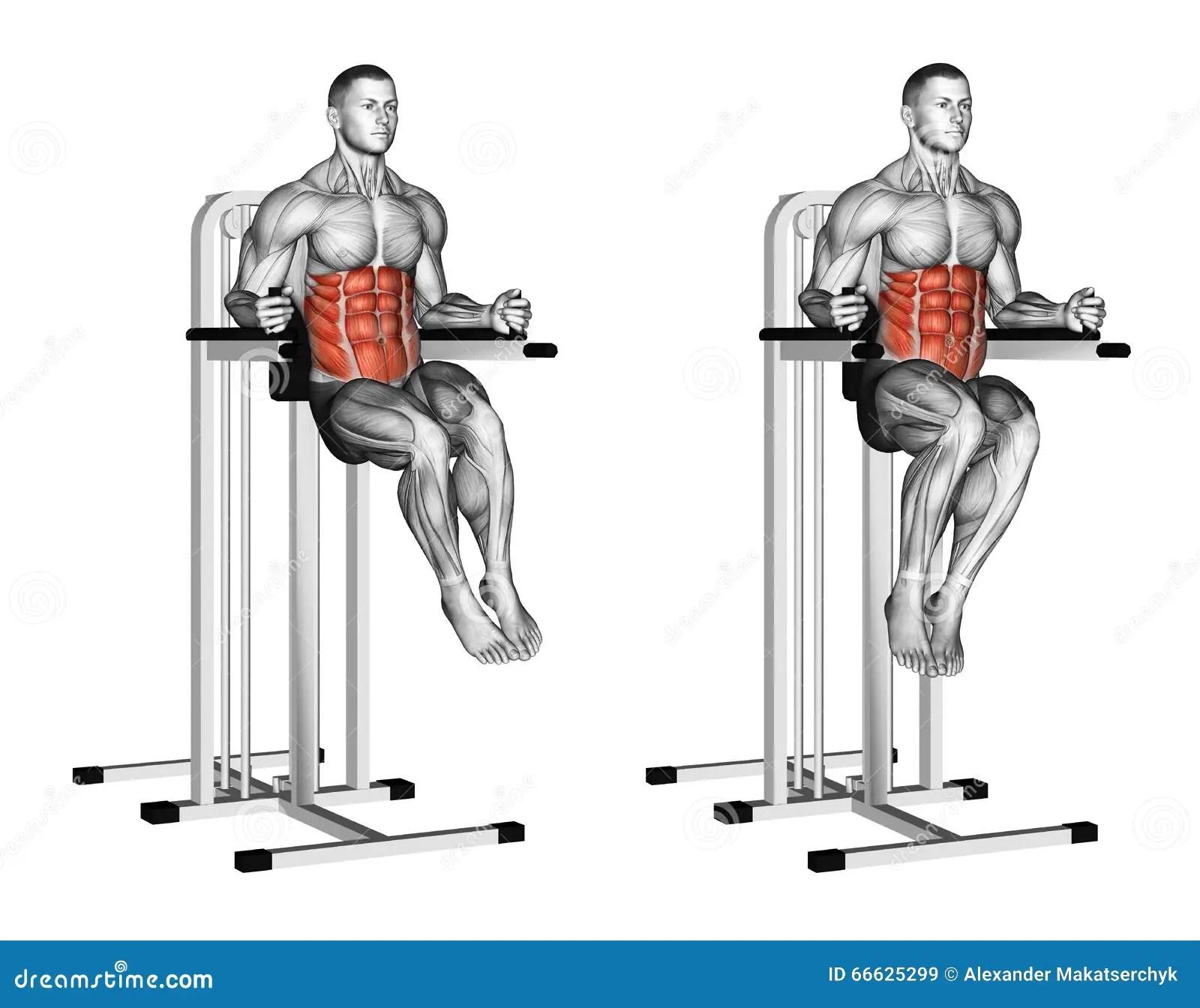 Captains Chair Workout