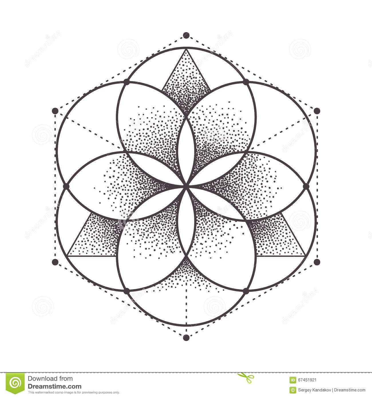 Sacred Geometry Stock Vector Illustration Of Vector