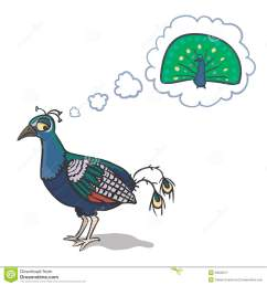 sad peacock [ 1300 x 1390 Pixel ]