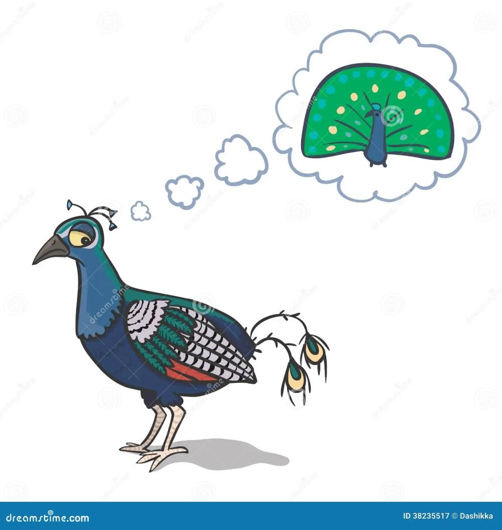 medium resolution of sad peacock