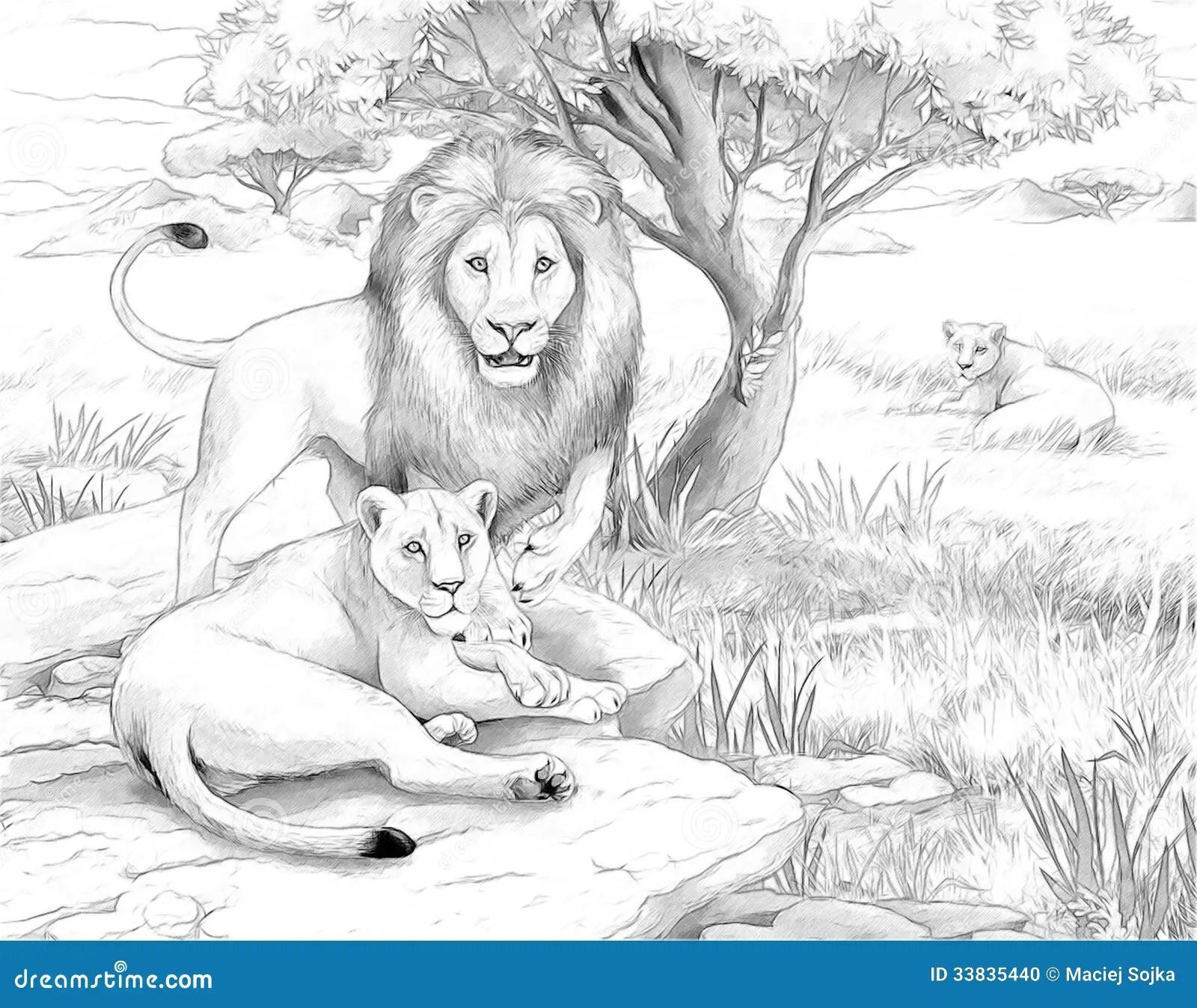 Lion Sketch Templates