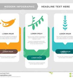 sage leaf business infographic template the concept is option step with full color icon can be used for cranberry cornelian cherry diagram infograph  [ 1300 x 1131 Pixel ]