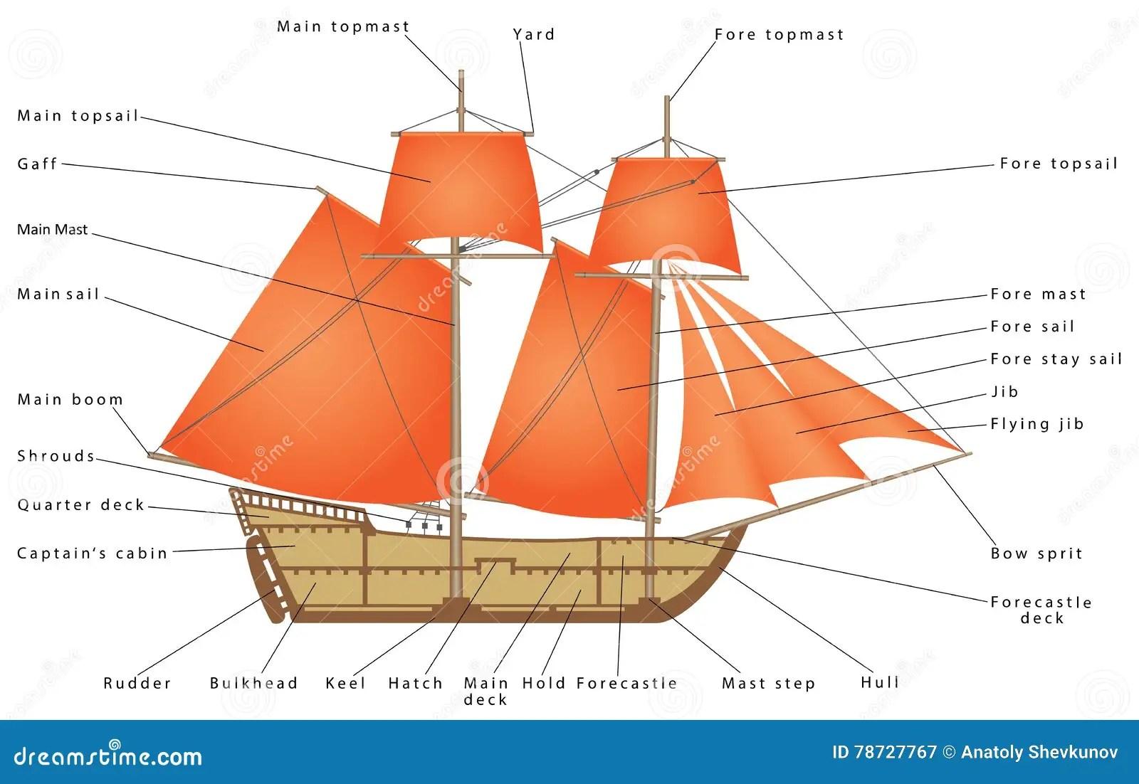 parts of a cruise ship diagram chimpanzee food chain sailboat cartoon vector cartoondealer 78727767