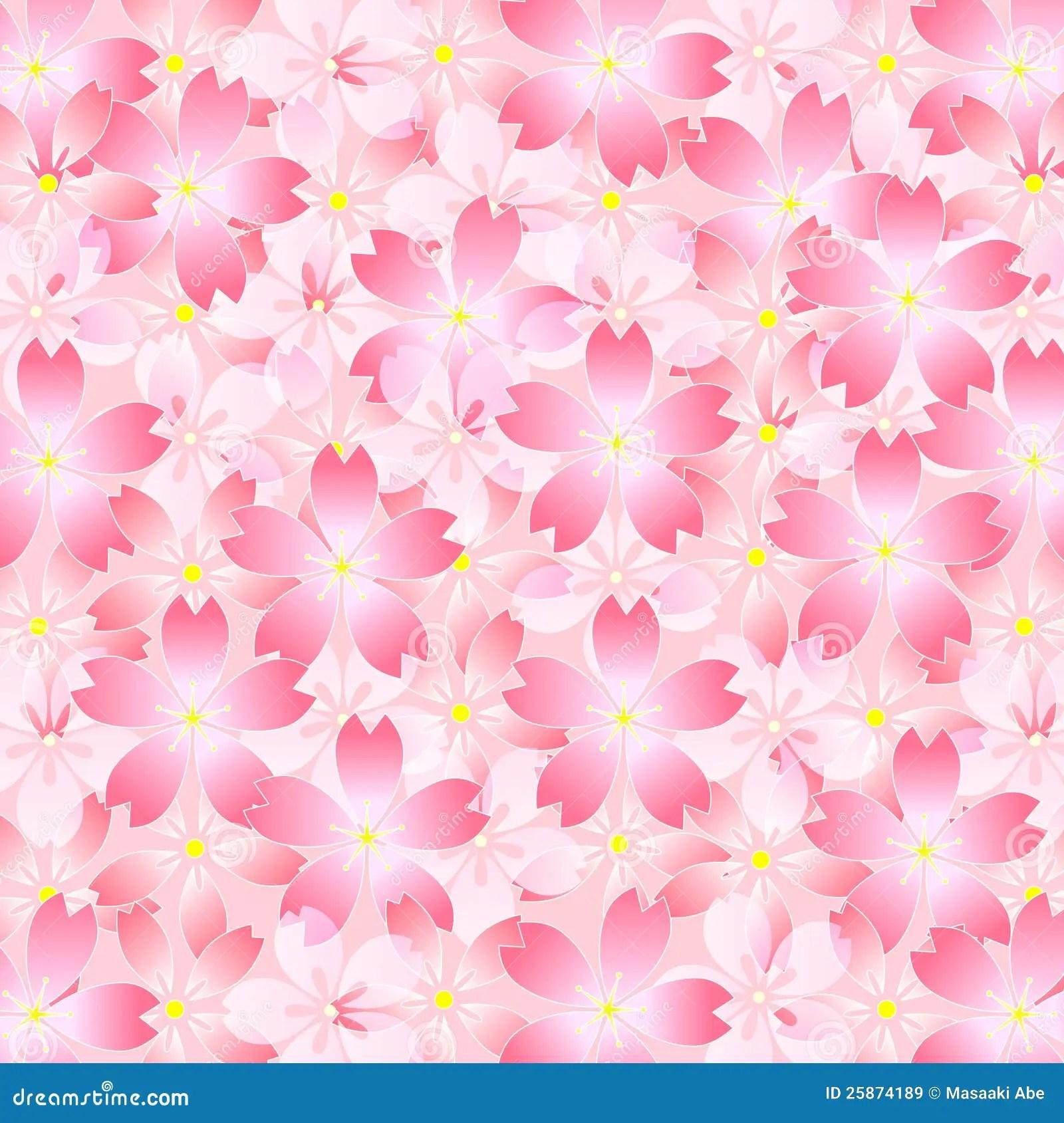 Cherry Blossom Wallpaper Hd Sakura Cherry Tree Background Royalty Free Stock Images