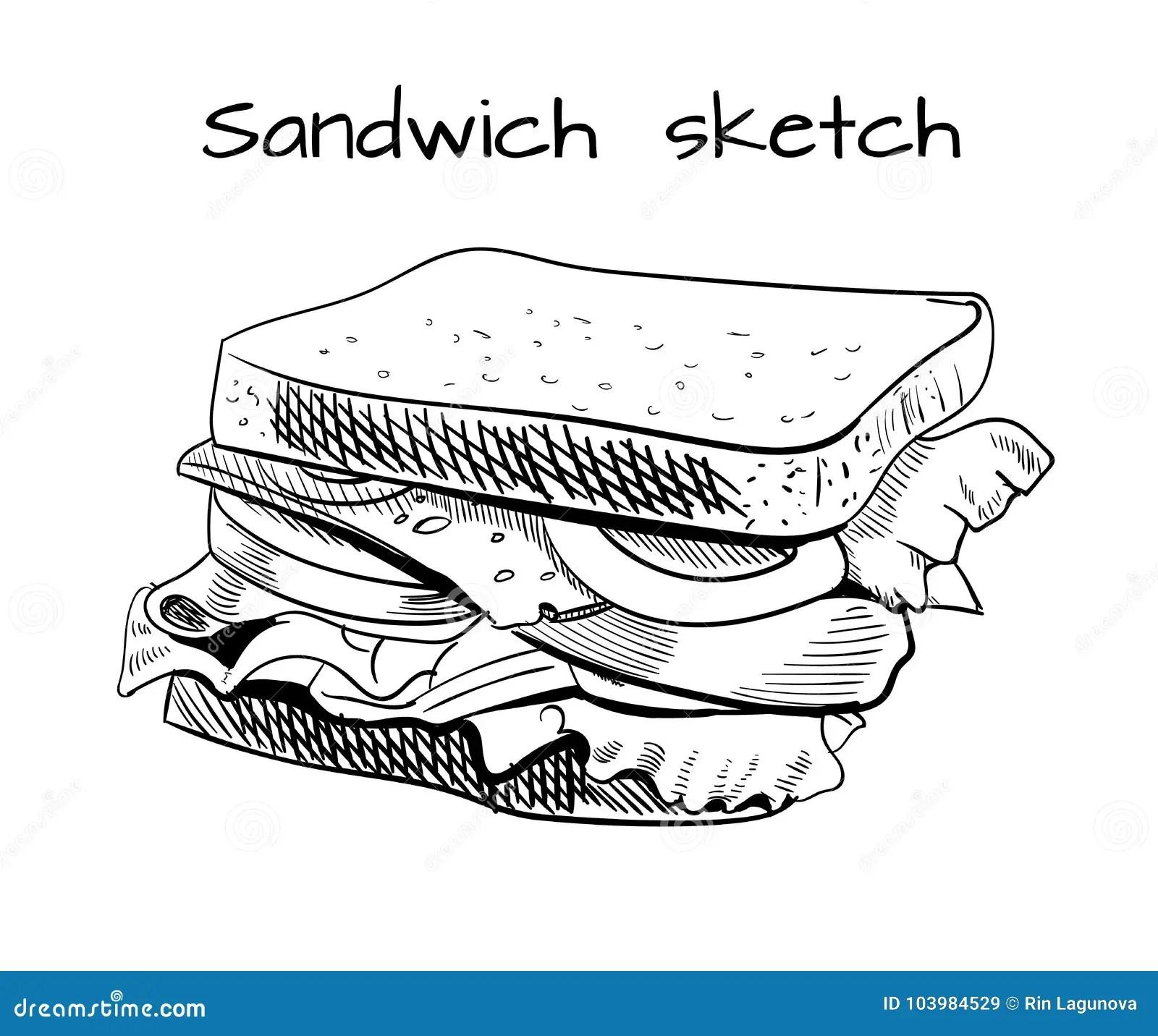 Sandwich Outline Drawing Vector Sketch Stock Vector