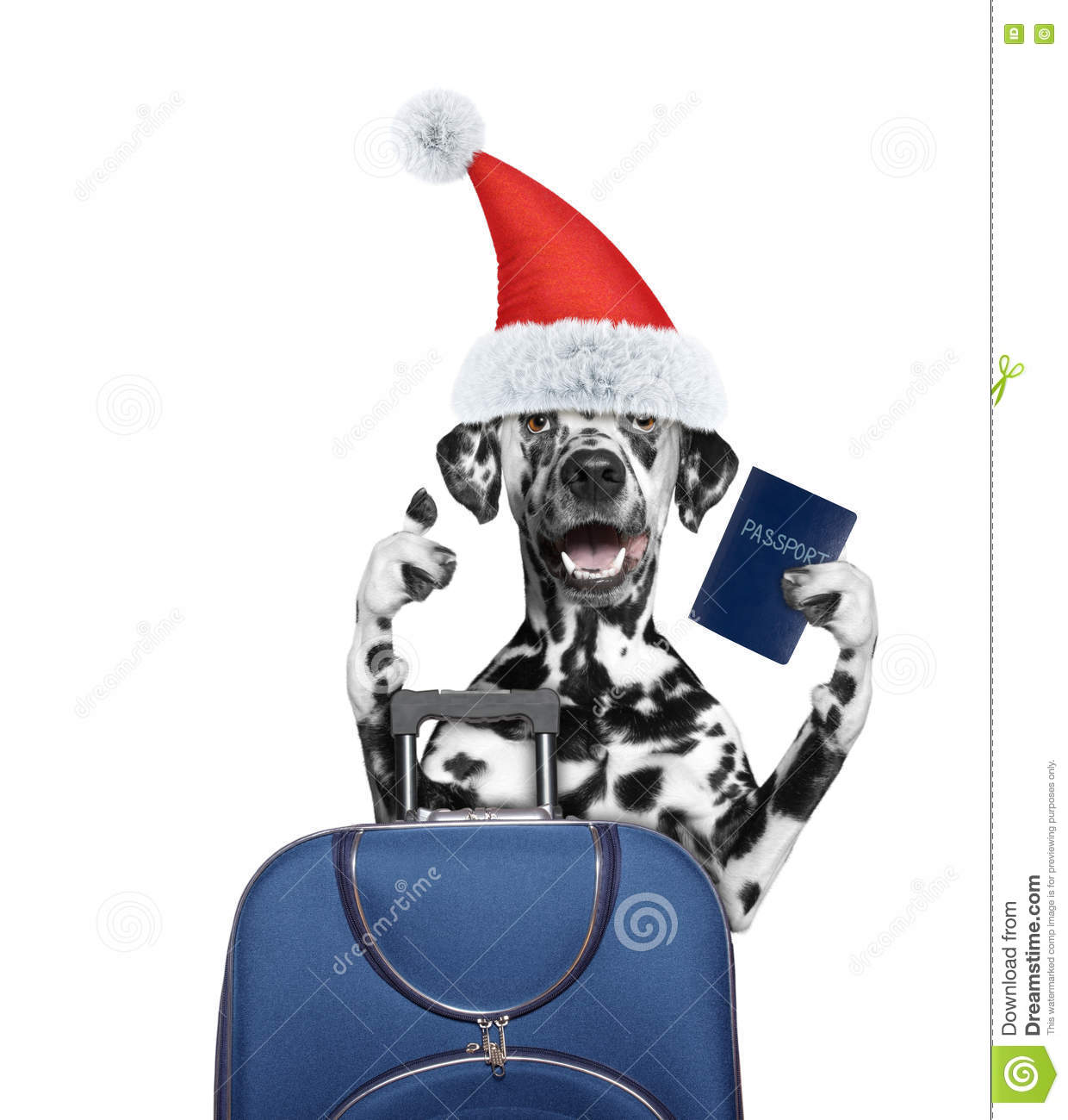 Santa Dog Is Going On A Trip To Travel With A Suitcase