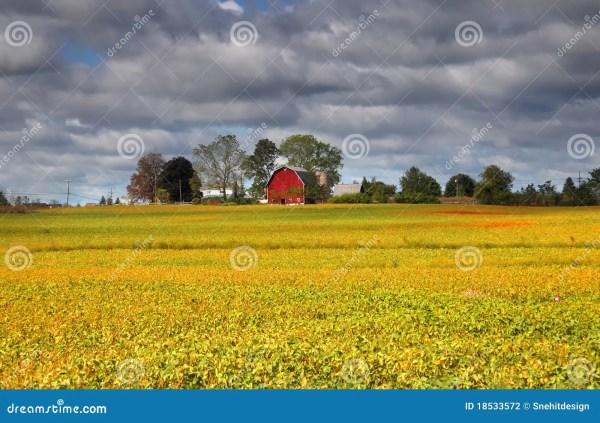 Scenic Farm Landscapes