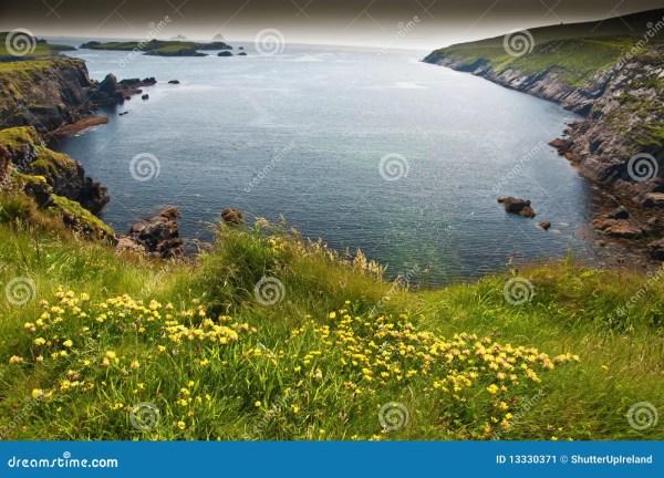 scenic vibrant landscape and seacape