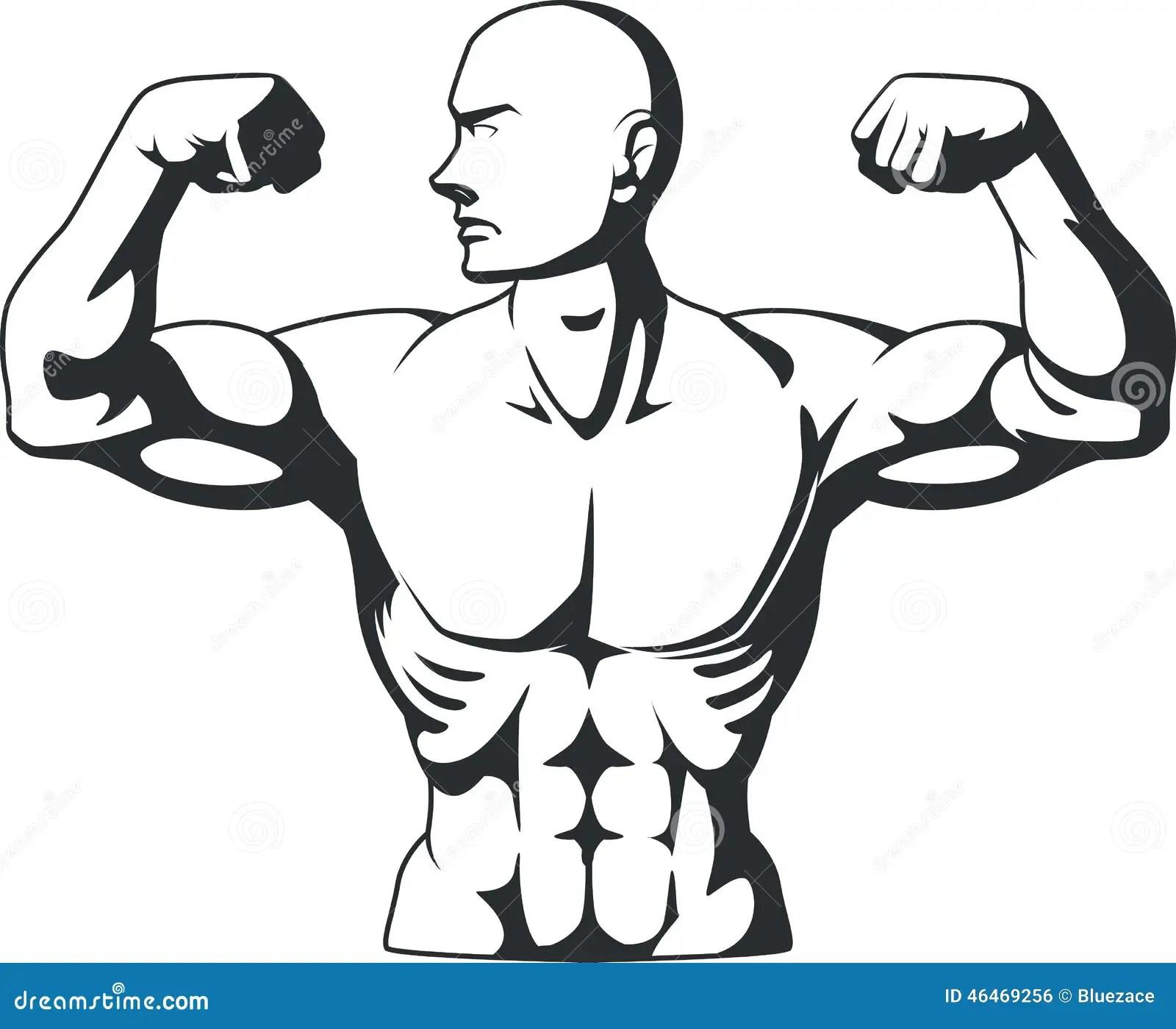 Schattenbild Des Bodybuilders Muskeln Biegend Vektor