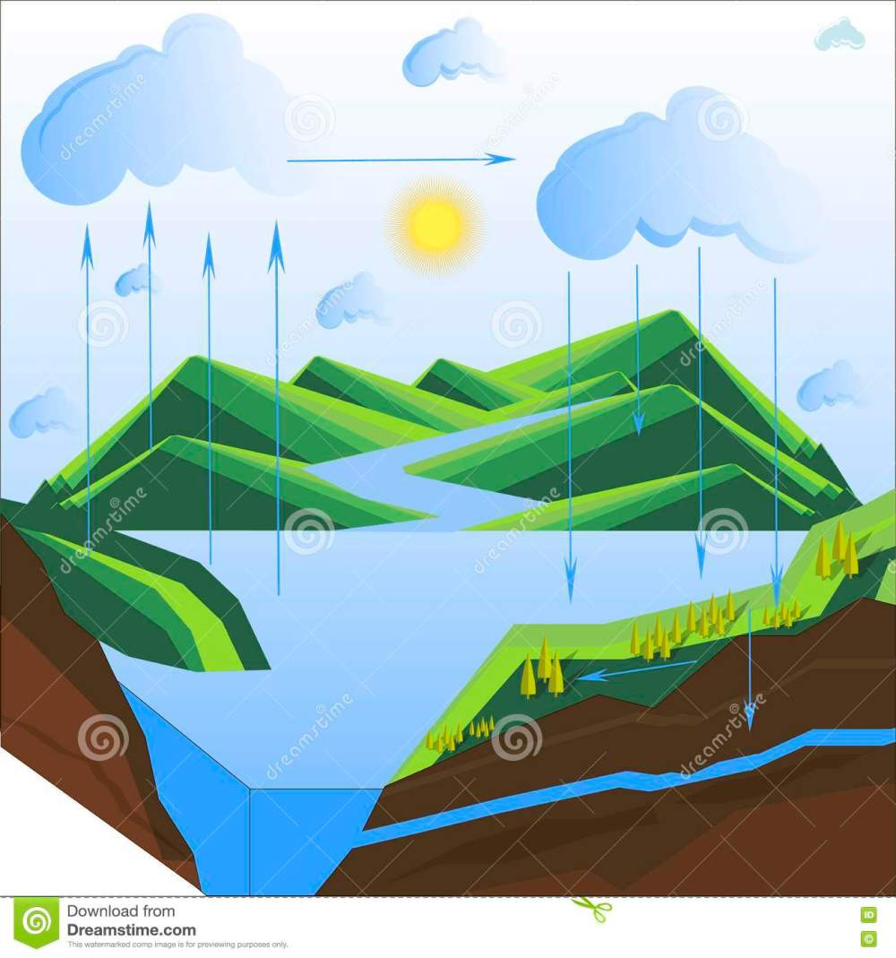 medium resolution of scheme of the water cycle in nature