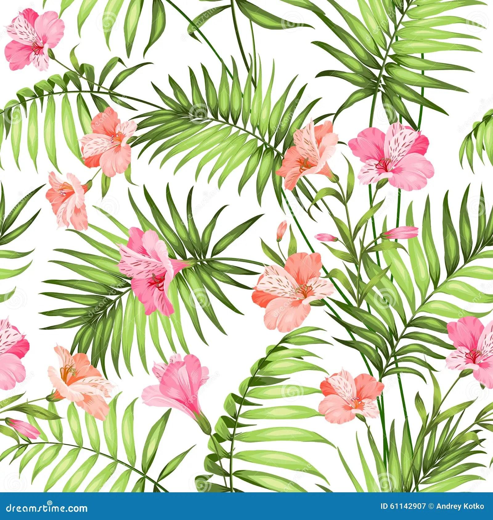 Schne Tropische Blumen Vektor Abbildung  Bild 61142907