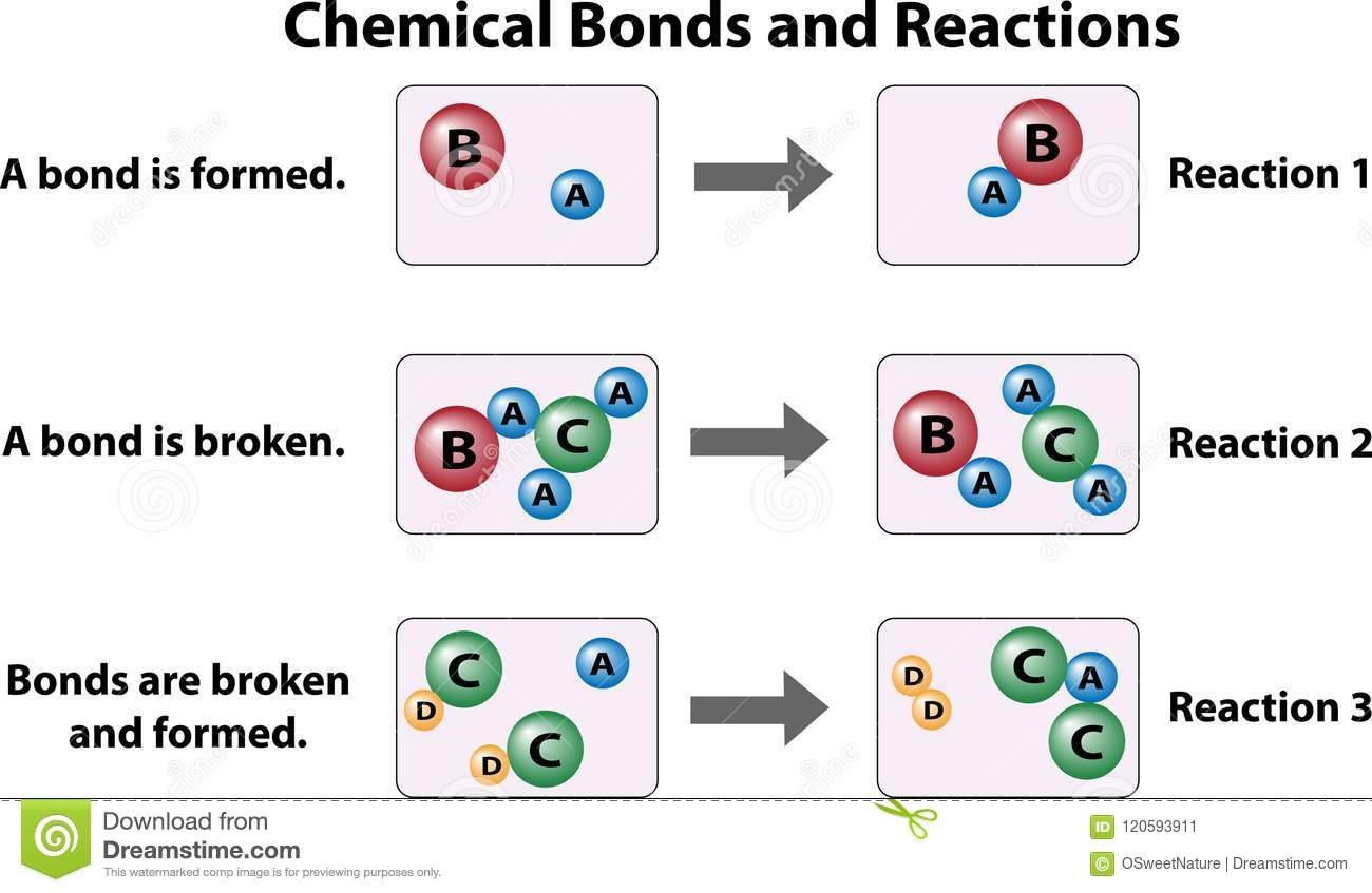 Chemical Bonds And Reactions Stock Vector
