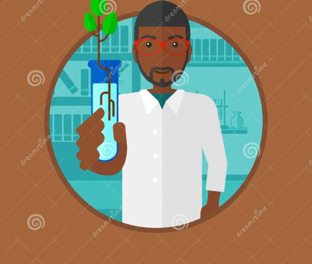 An African American Scientist Holding Test Tube With Young Plant Young Male Scientist Analyzing Sprout In Test Tube Vector Flat Design Illustration In The