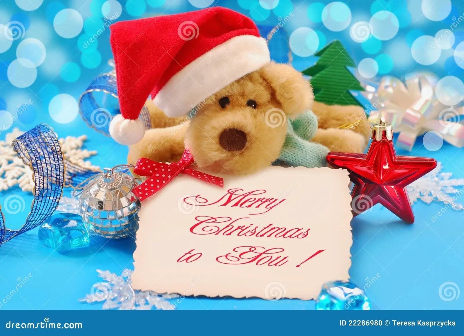 Se Weihnachtsgre Stockfoto Bild 22286980
