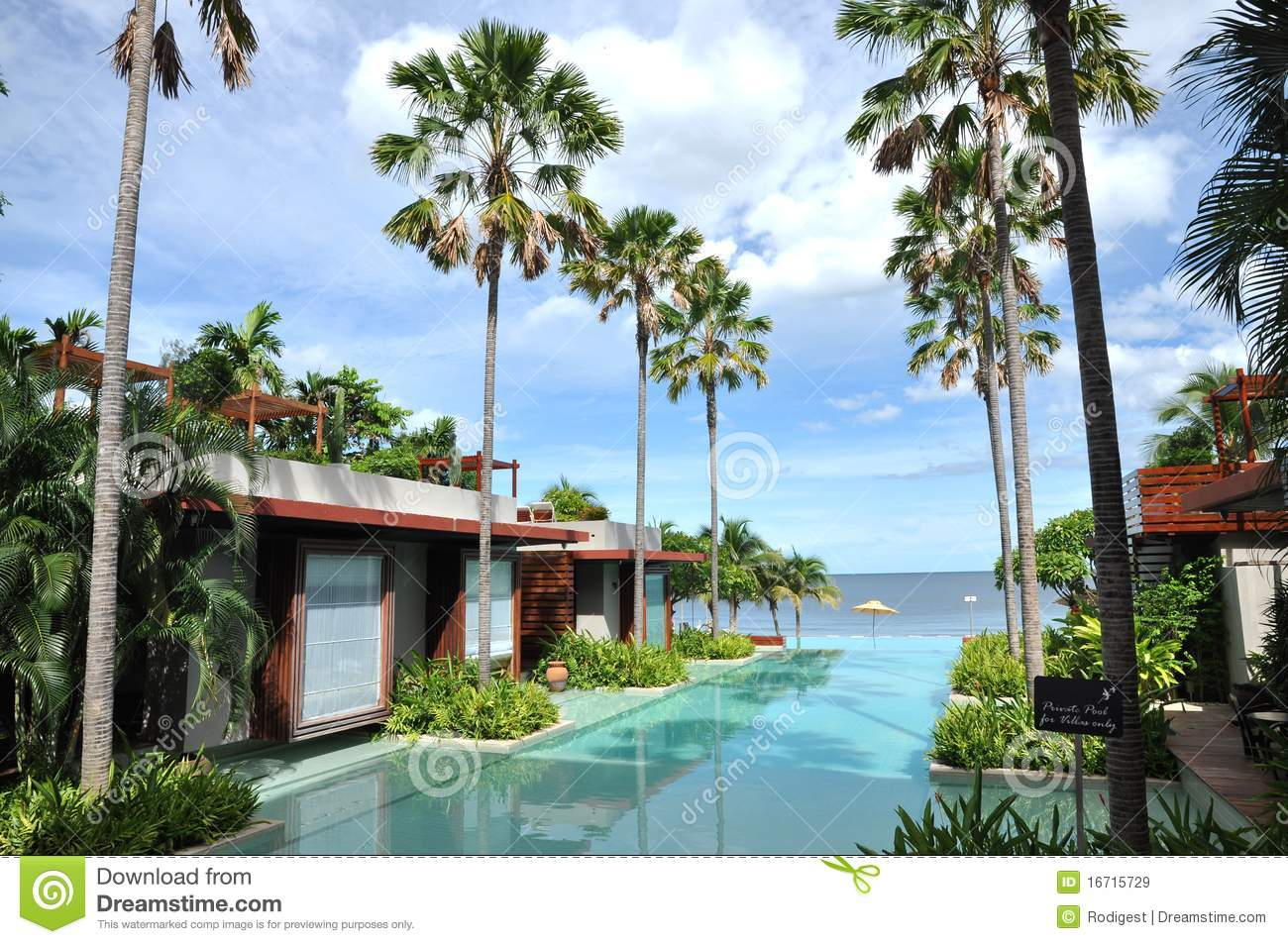 Sea Palm Tree Resort Swimming Pool Royalty Free Stock Images  Image 16715729