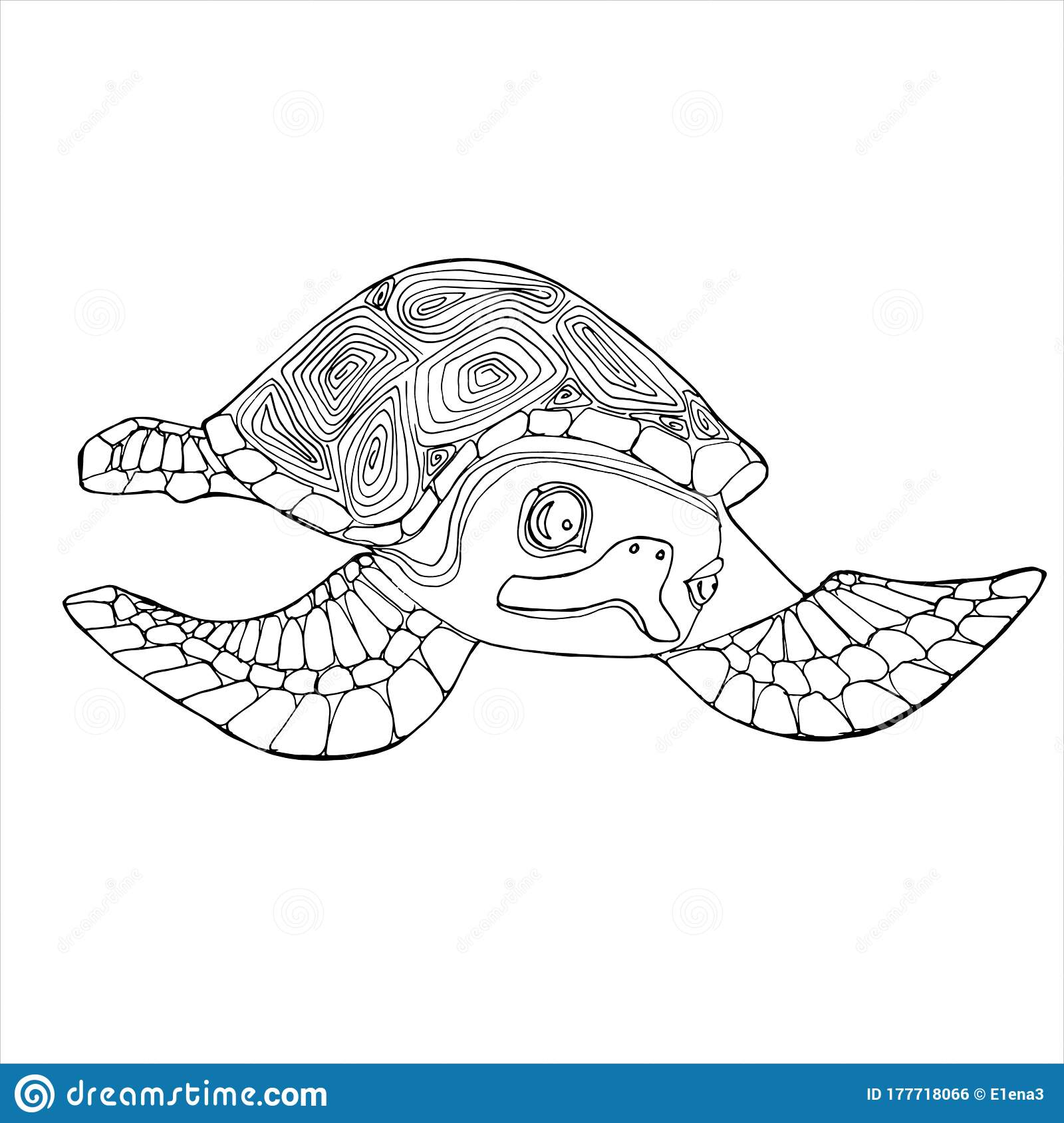 Sea Turtle Coloring Book Hand Drawing Coloring Book For Children And Adults Stock Illustration Illustration Of Funny Effect 177718066