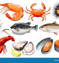 seafood [ 1300 x 895 Pixel ]