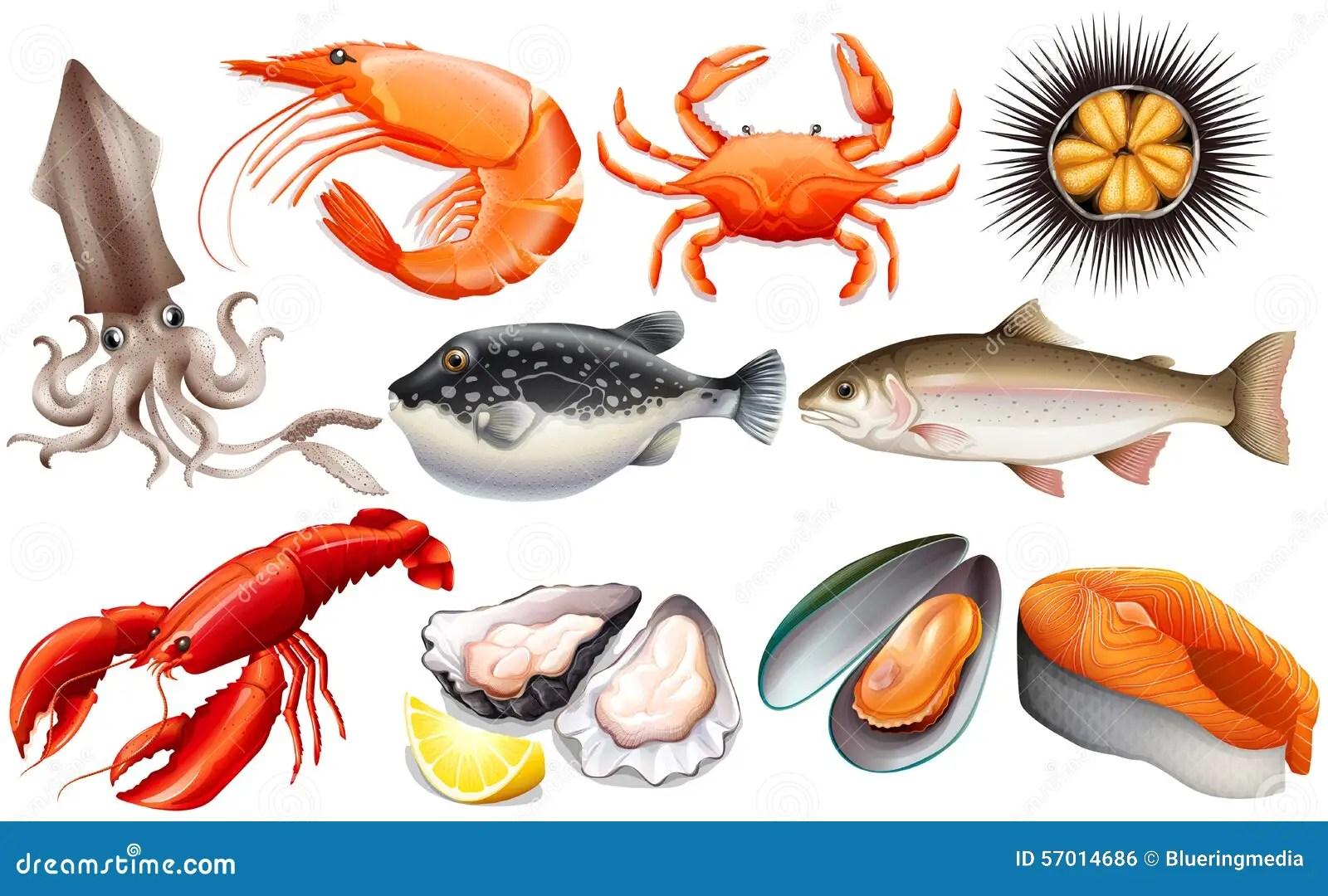 hight resolution of seafood