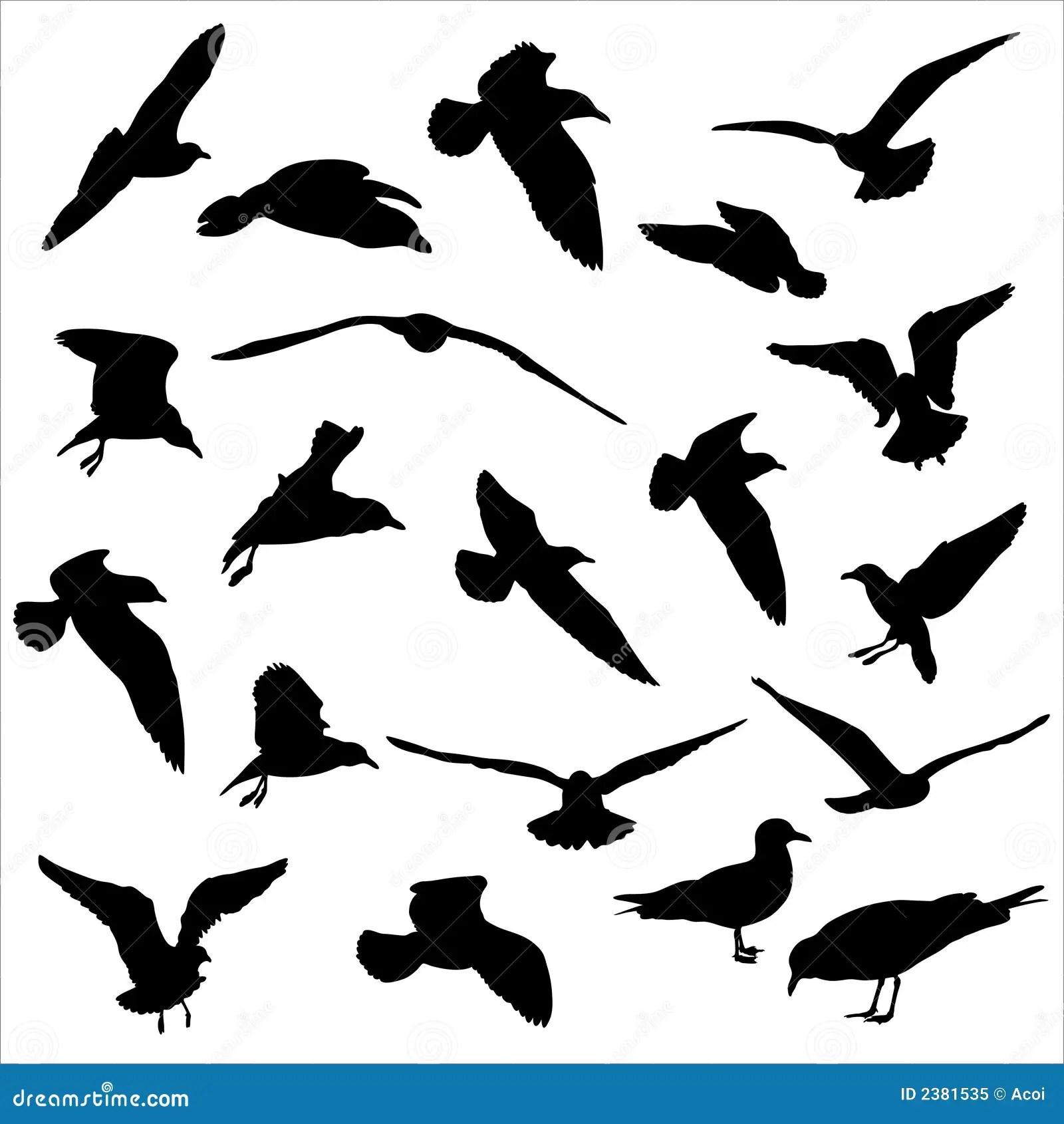 Seagulls Silhouettes Stock Vector Illustration Of
