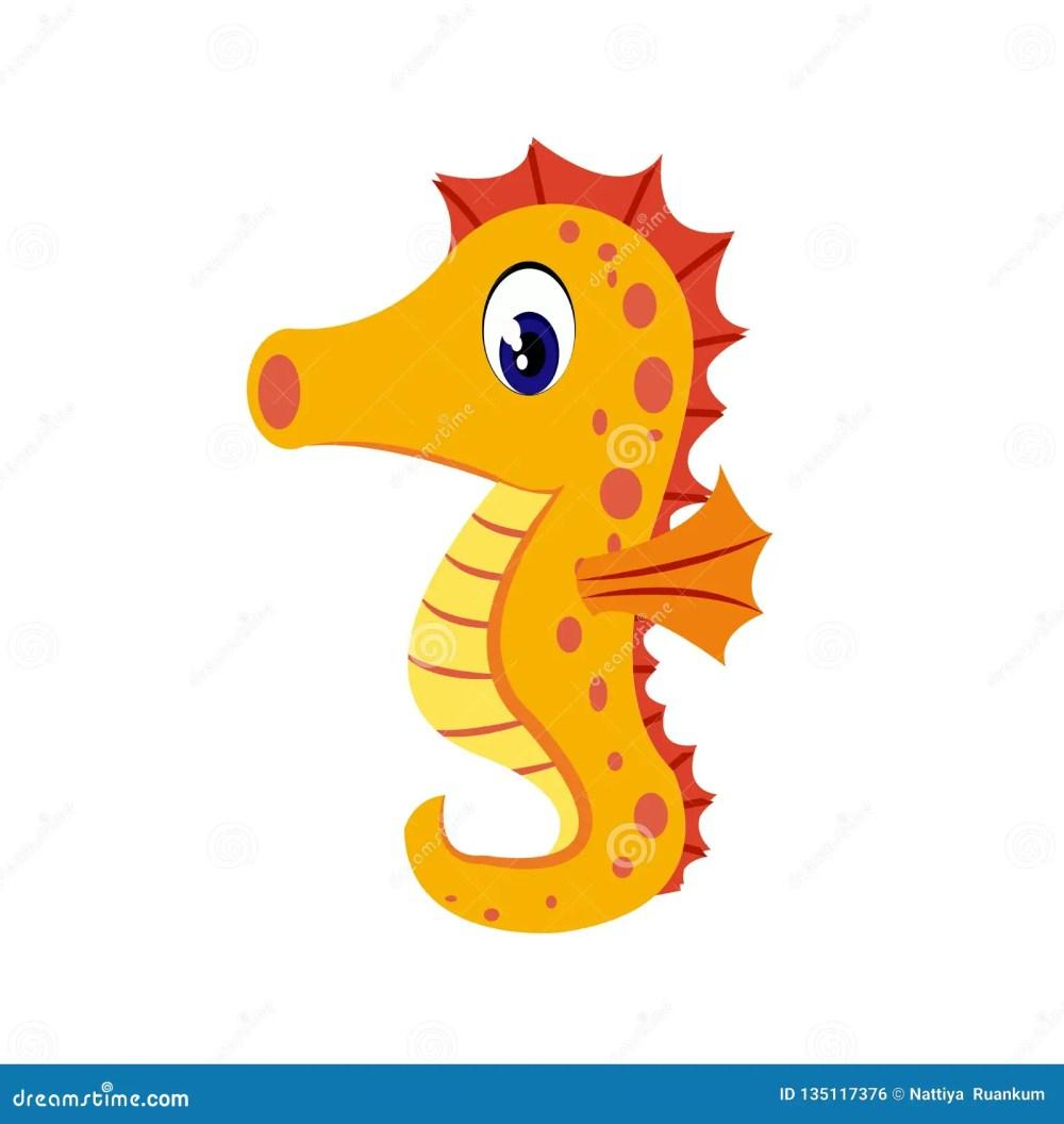 medium resolution of seahorse cartoon or seahorse clipart cartoon isolated on white background
