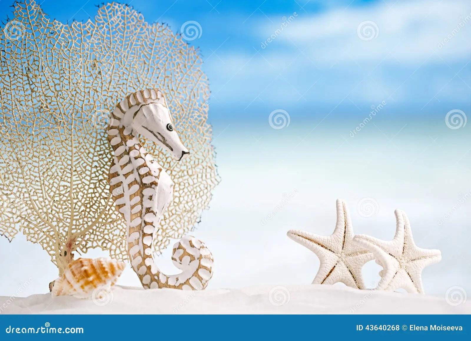 Seahorse With White Starfish On White Sand Beach Ocean