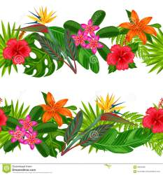 tropical horizontal leaves flowers borders plants background vector seamless easy hand