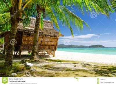 Bamboo Hut On Tropical Beach Stock Image - Image of palm ...