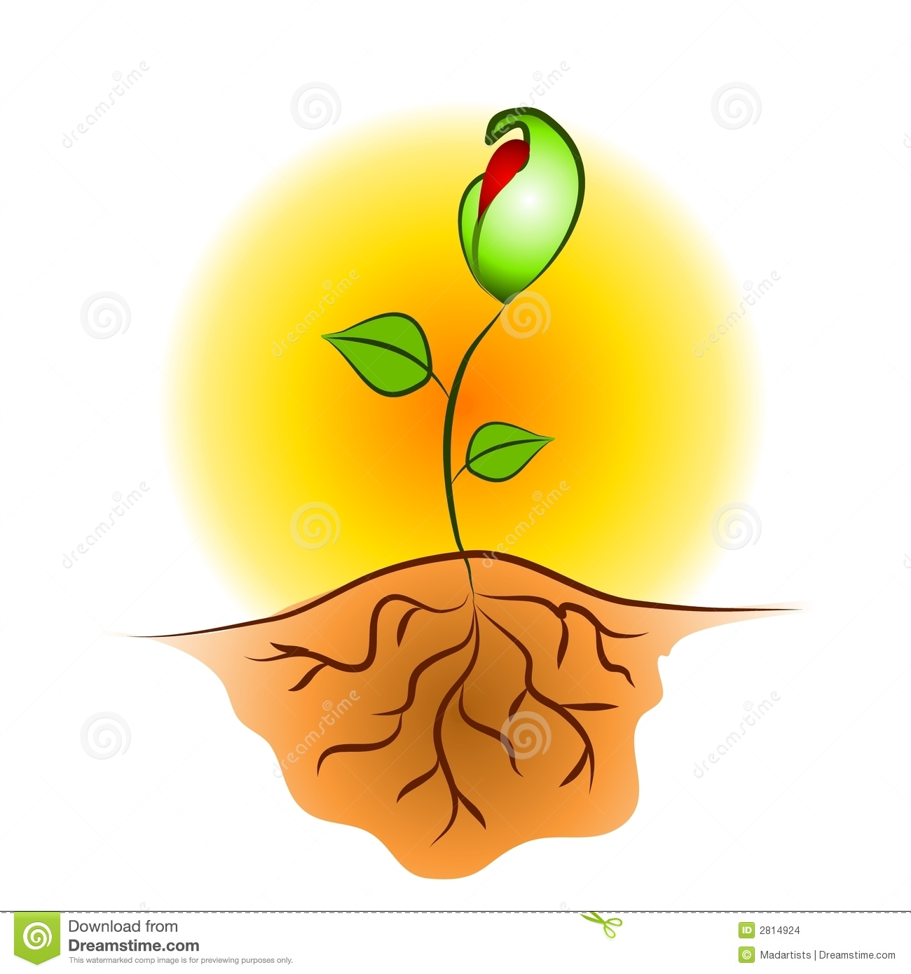 plant diagram clip art 2011 ford f150 radio wiring seedling roots stock illustration