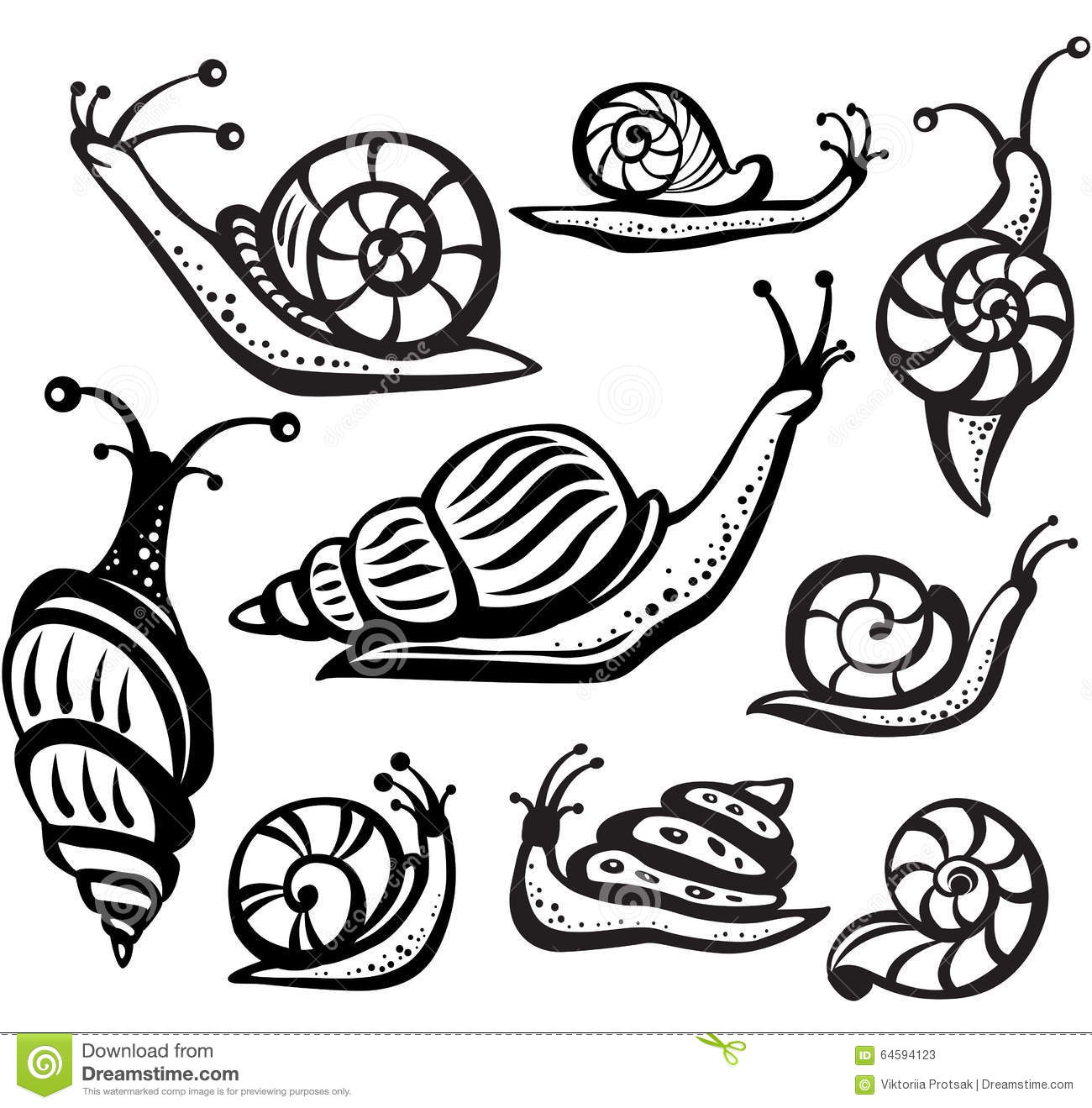 Set Of Black And White Snails Stock Vector
