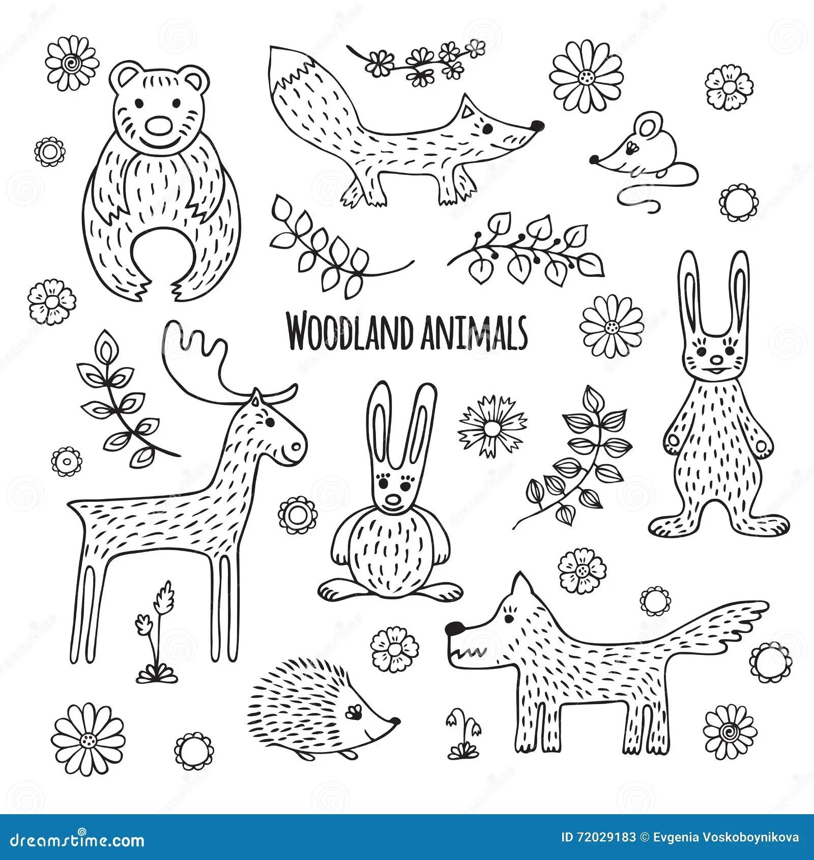 Coloring Animal Worksheet