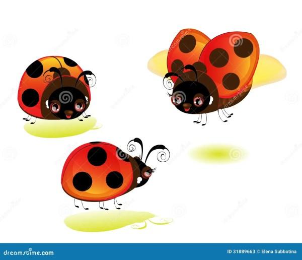 > cute baby ladybug