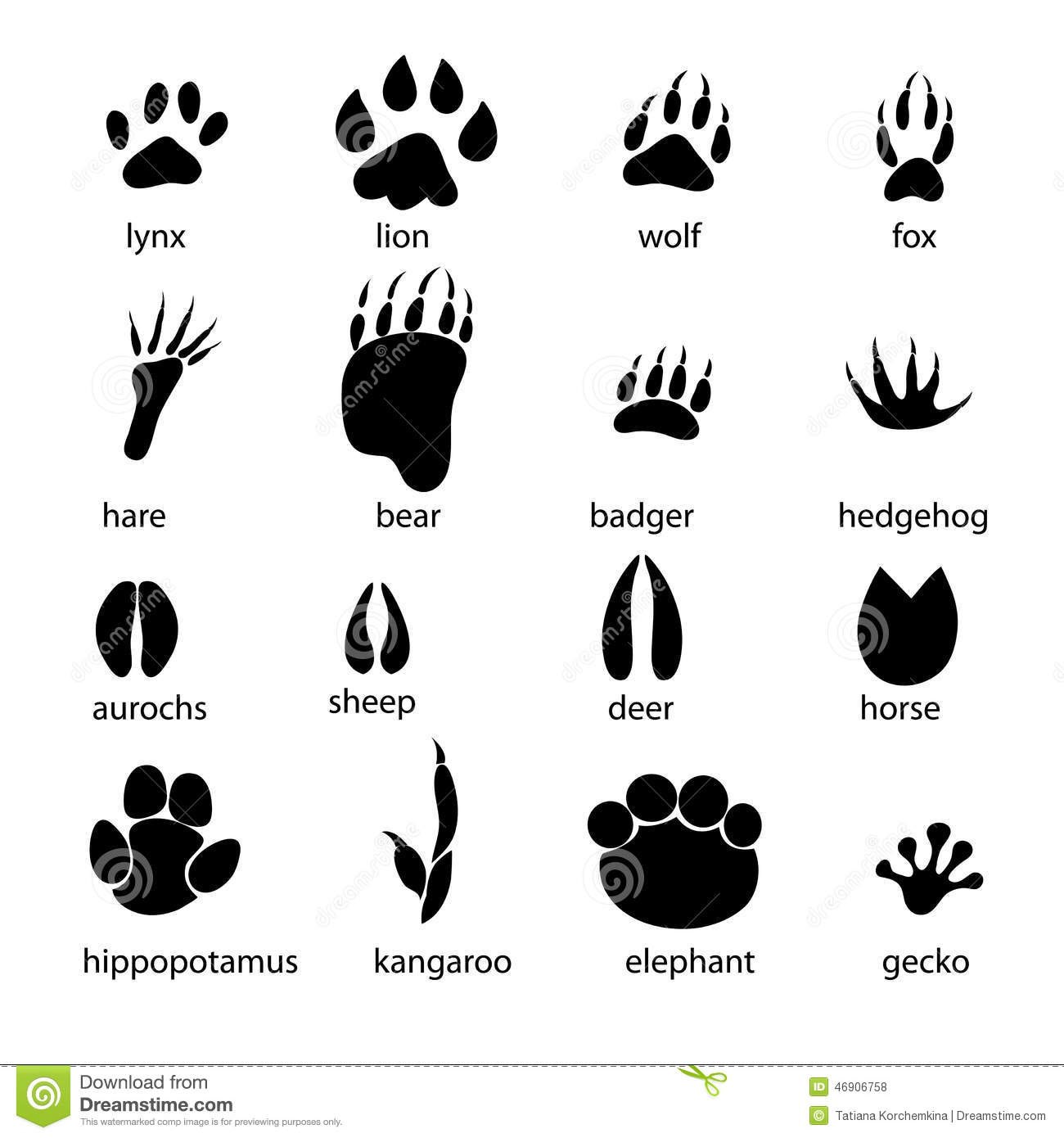 Set Of Different Animal Tracks Stock Vector
