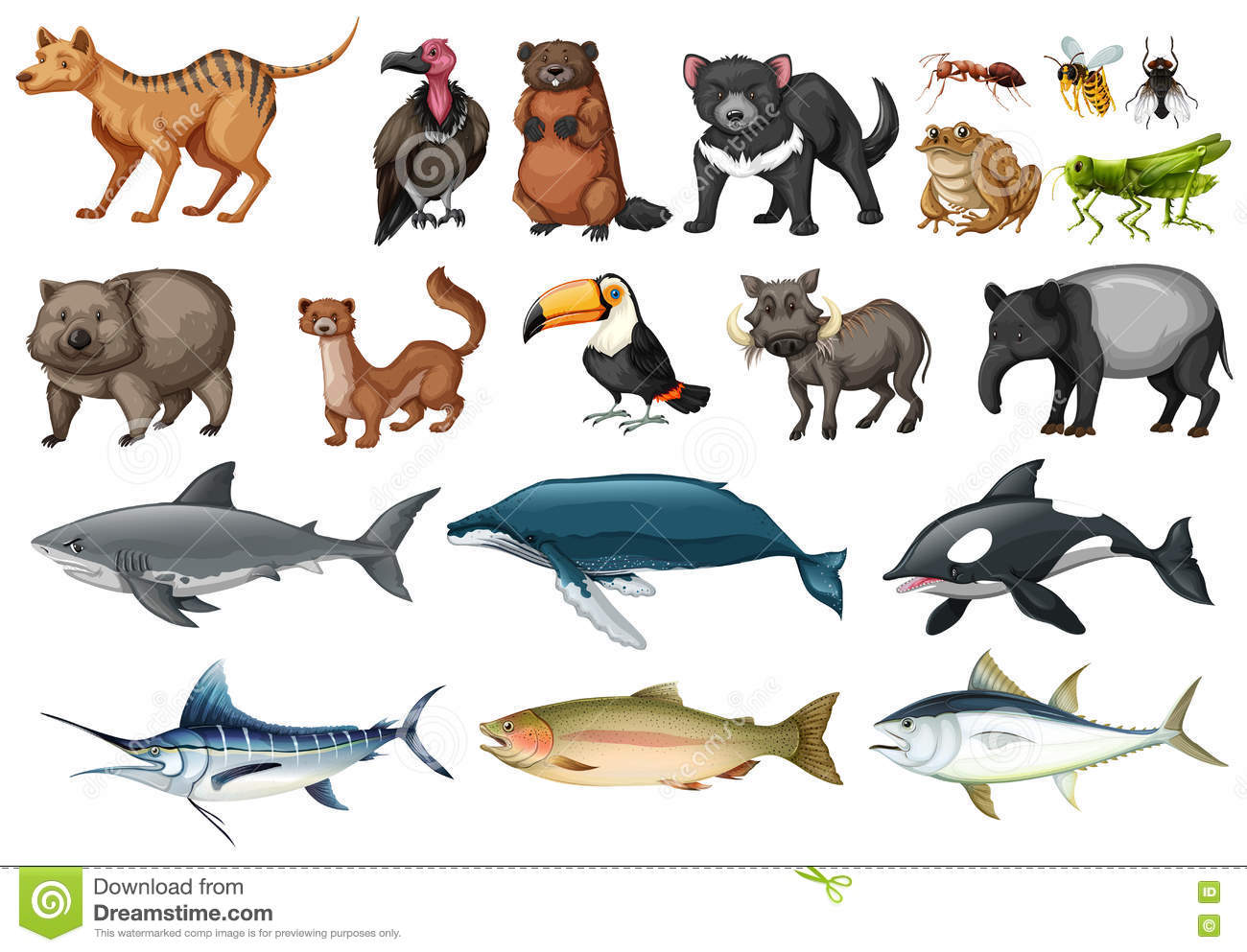 Set Of Different Types Of Wild Animals Stock Vector