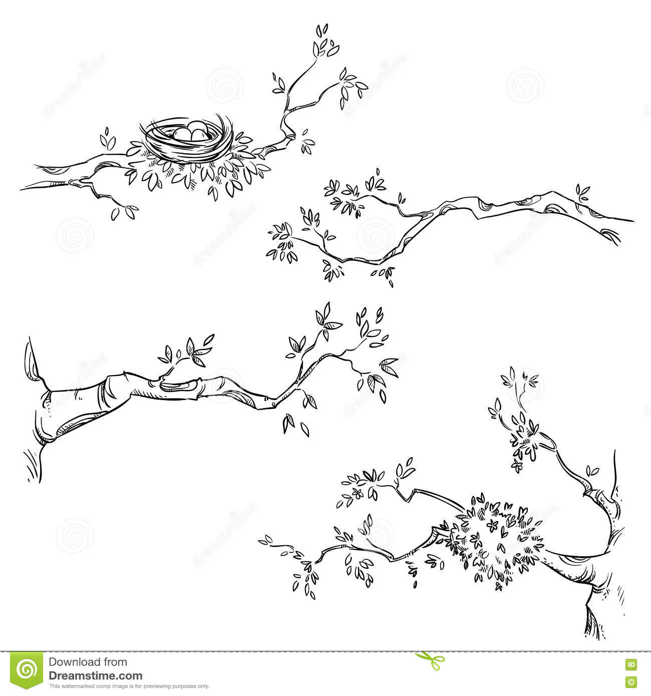Set Of Hand Drawn Branches Vector Illustration Stock