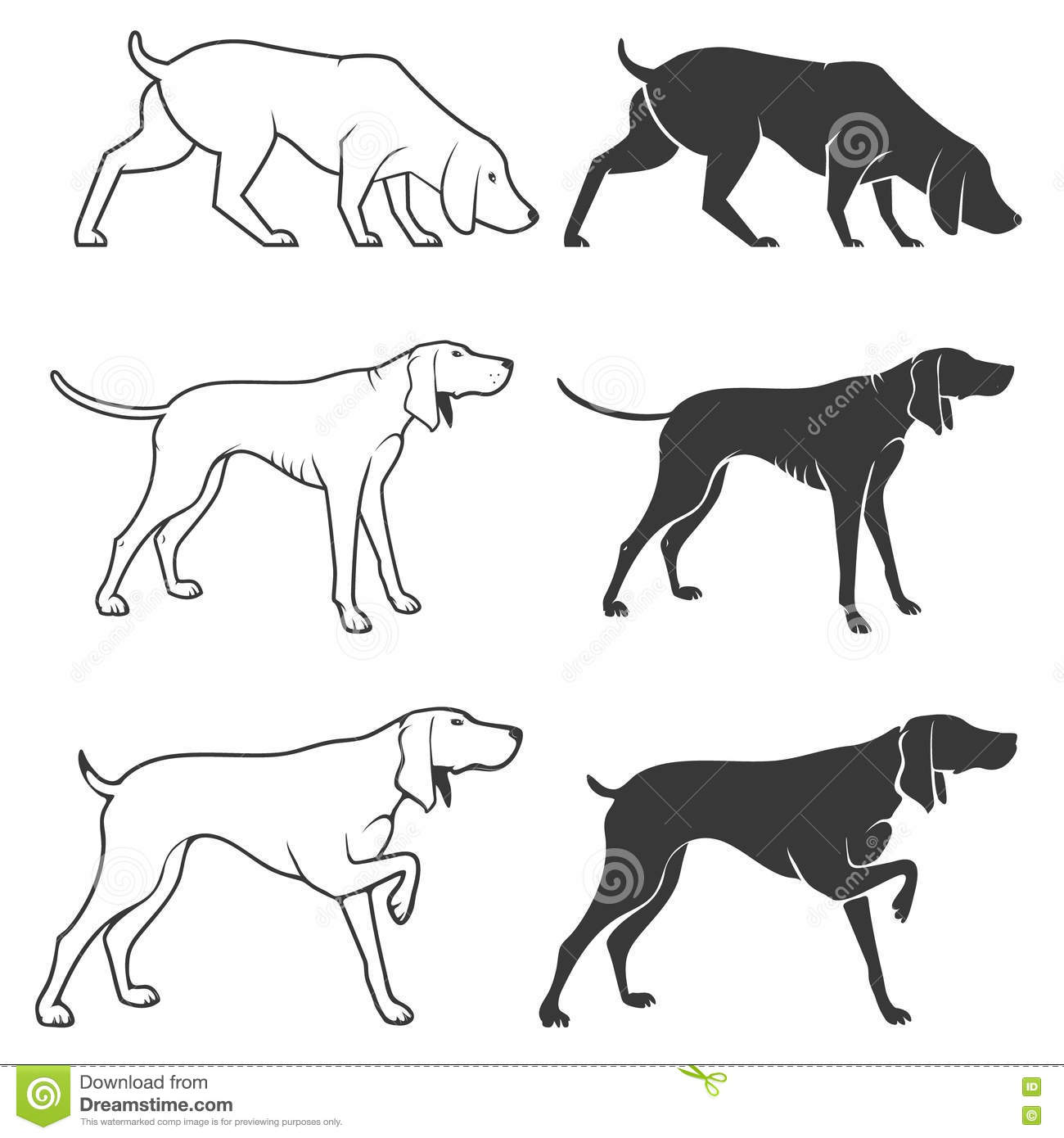 Set Of Hunting Dogs Illustrations Stock Vector