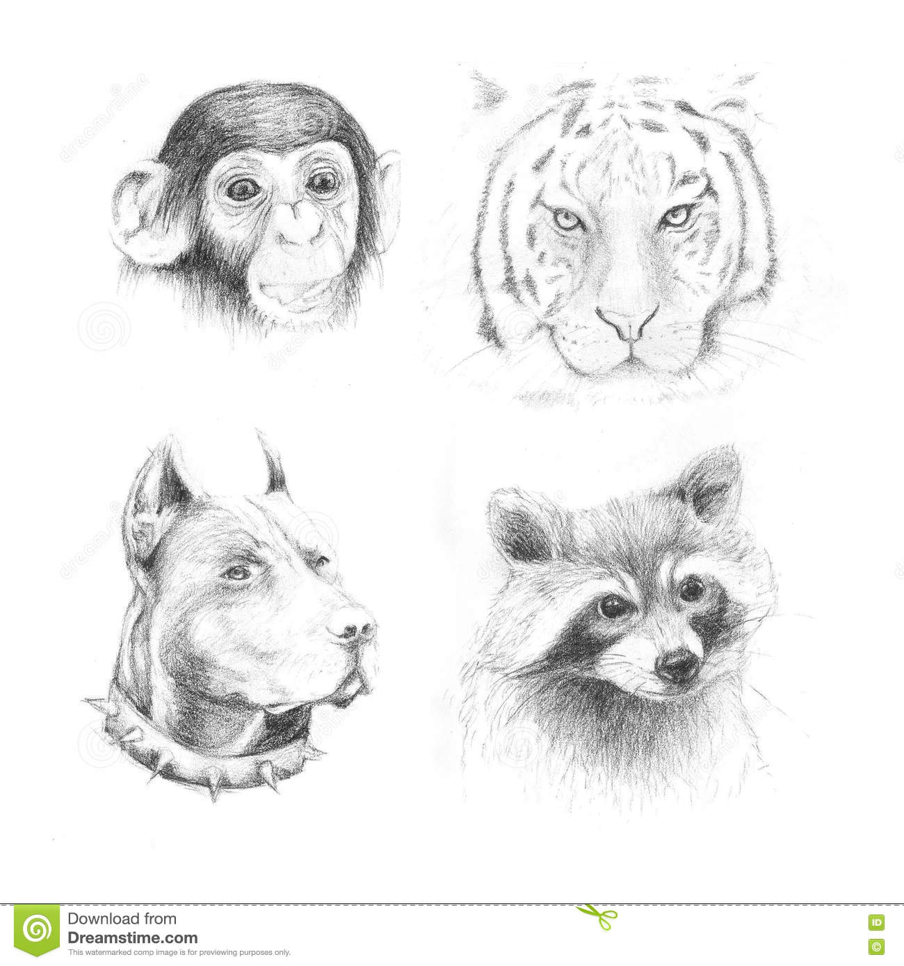 Set Pencil Drawing Animals Stock Illustration