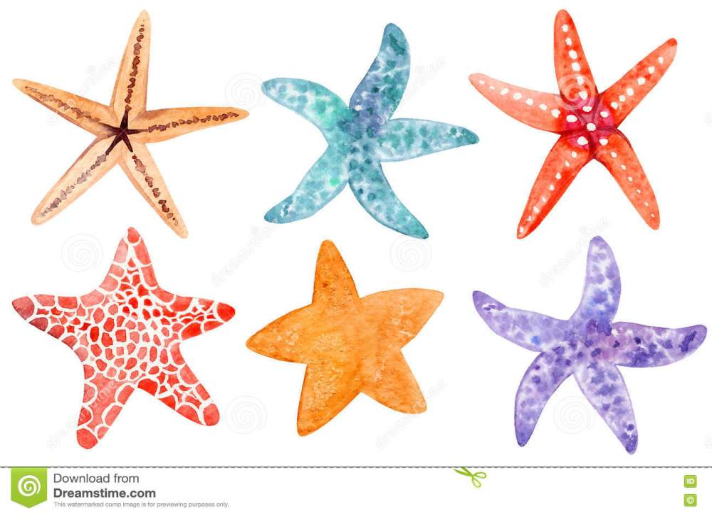 medium resolution of set of starfish clipart stock illustration illustration of hand rh dreamstime com starfish clip art free starfish clipart png