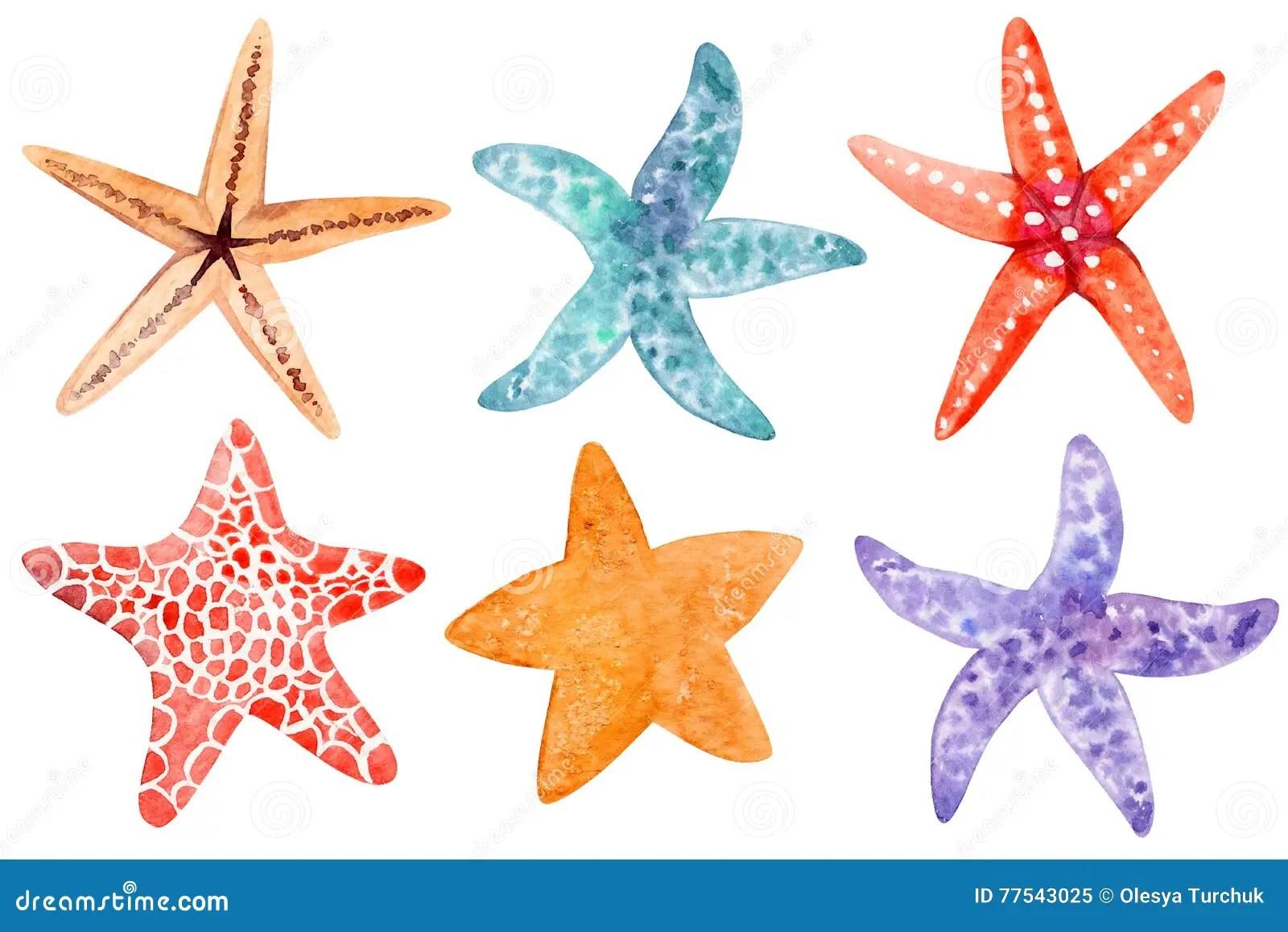 hight resolution of set of starfish clipart stock illustration illustration of hand rh dreamstime com starfish clip art free starfish clipart png