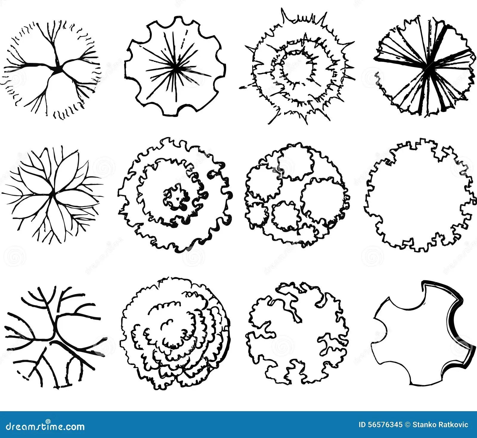 shrub graphic symbols diagram unilite wiring a set of treetop stock illustration image