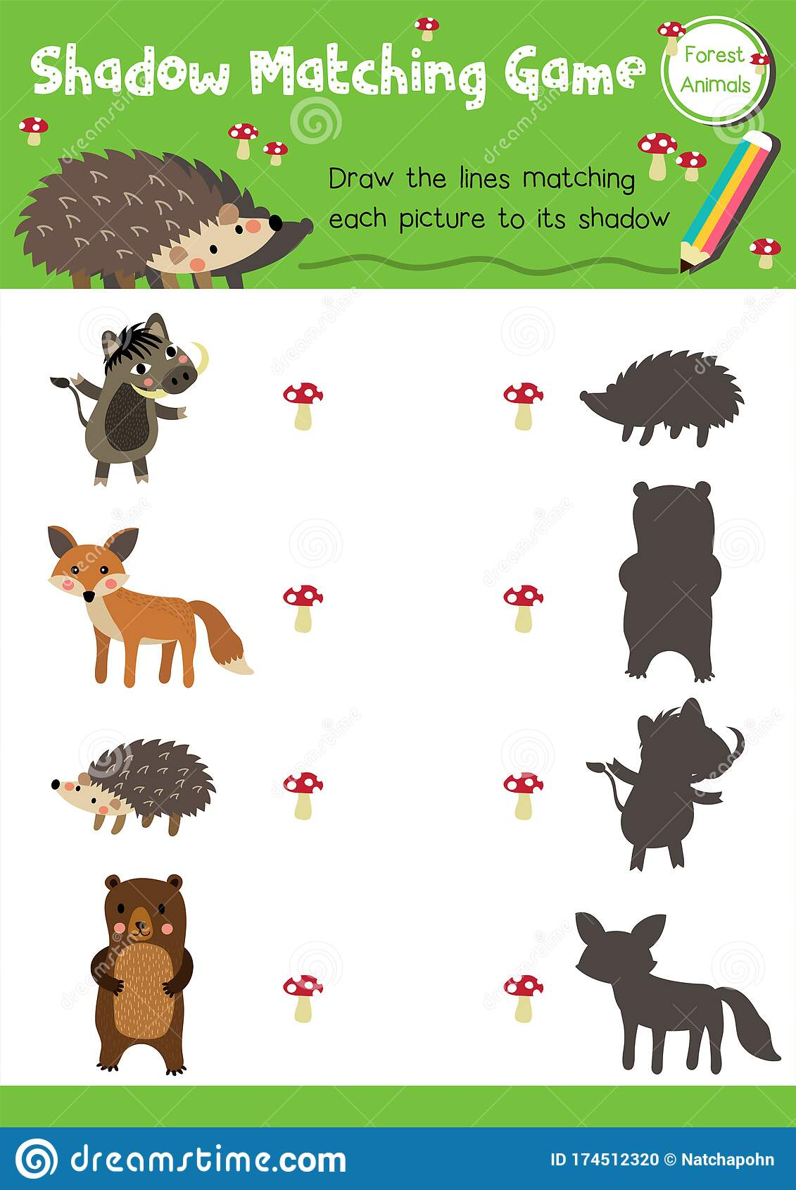 Shadow Matching Game Forest Animal Stock Vector