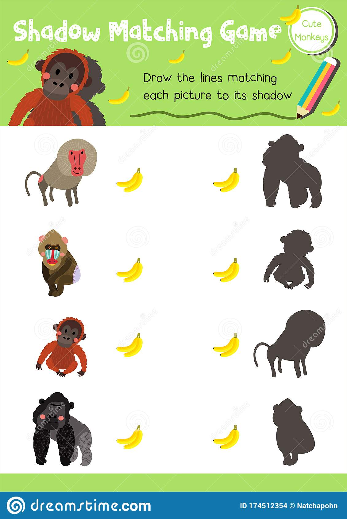 Shadow Matching Game Monkey Animal Stock Vector