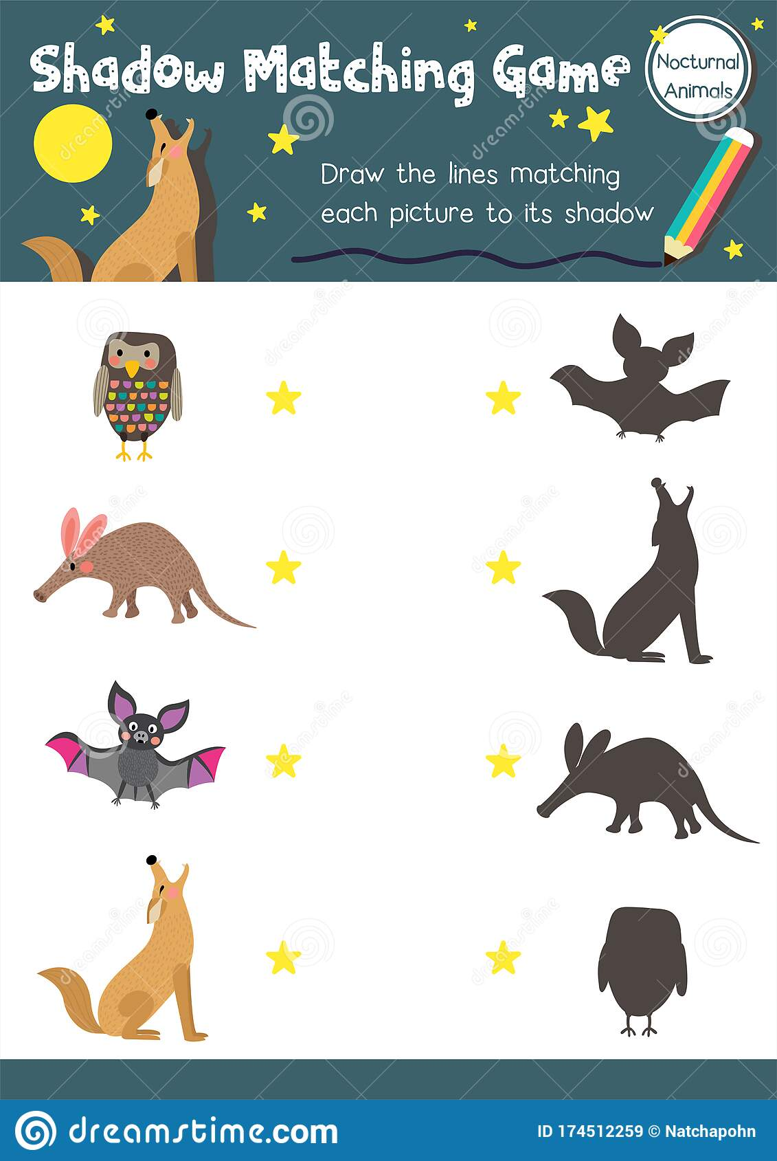 Shadow Matching Game Nocturnal Animal Stock Vector