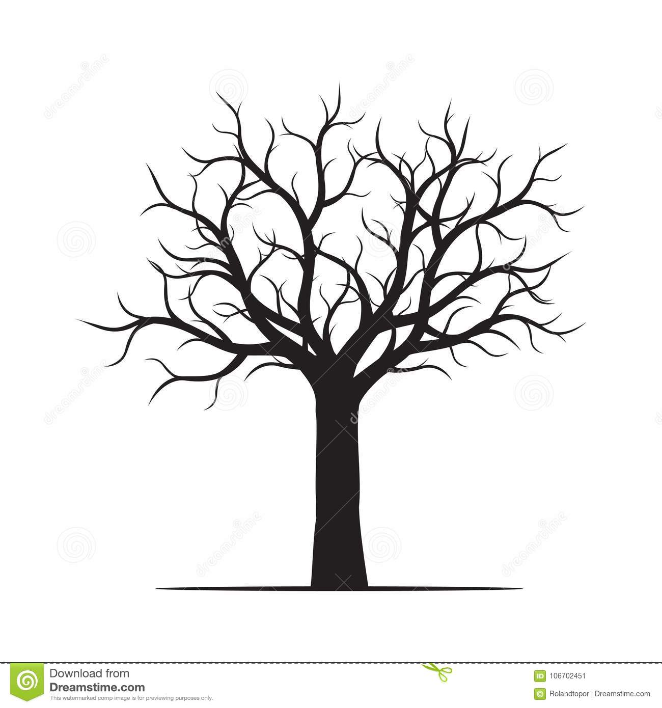 Beautiful Tree Without Leaves