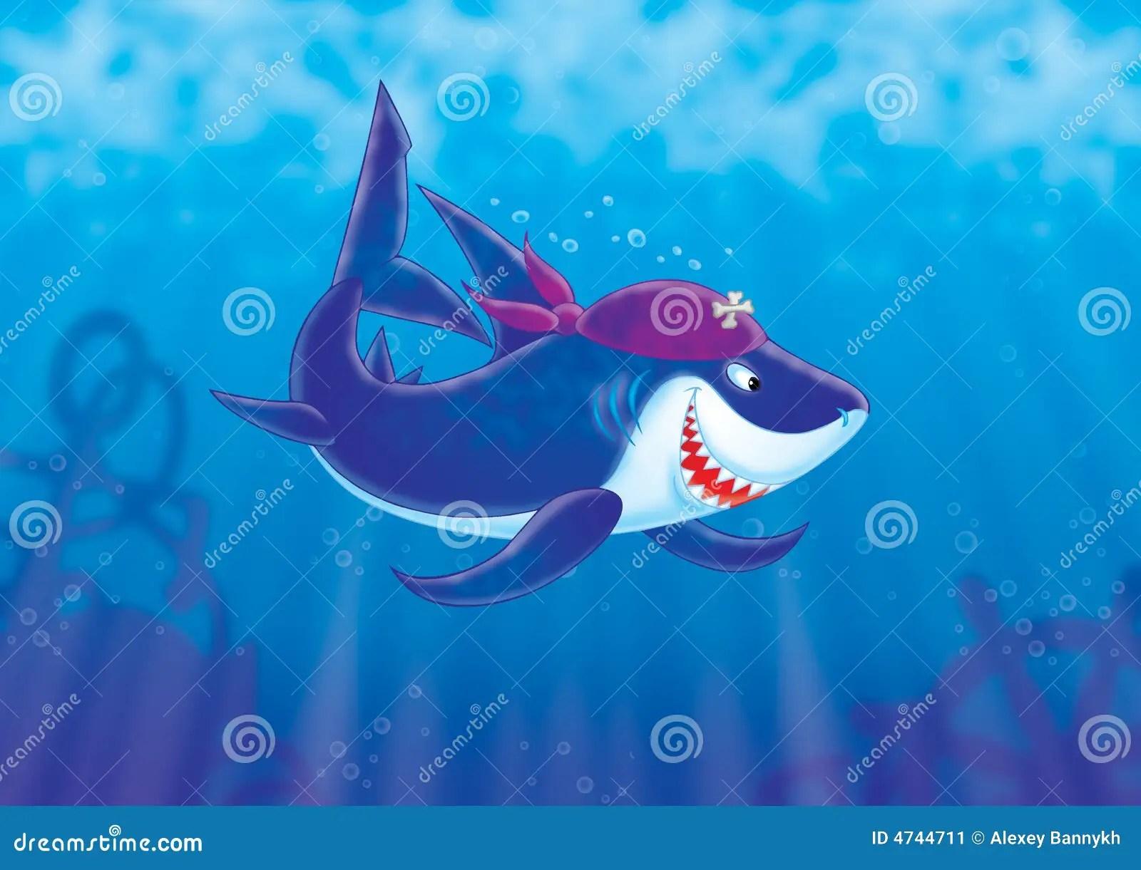 Exotic Animal Wallpaper Shark Pirate Stock Image Image 4744711