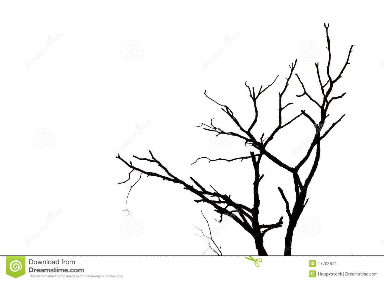 Silhouette Branches Stock Image