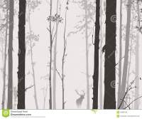 Silhouette Of The Forest With Deer Stock Photo